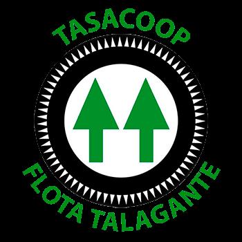 Flota Talagante prepara sus elecciones
